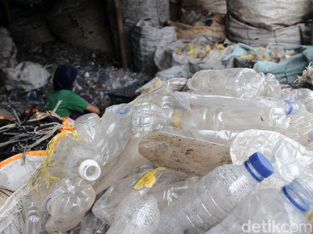 Pekerja sudah terampil memisahkan antara botol PET yang bersih dengan yang sudah terkontaminasi ke dalam keranjang yang berbeda.