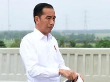 Jokowi Setop Ekspor Batu Bara? Ngeri-ngeri Sedap Buat CAD RI