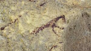 Lukisan Gua Tertua Dunia di Makassar Terancam oleh Bakteri