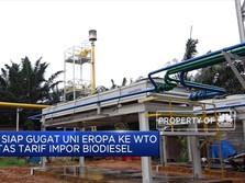 RI Siap Gugat Uni Eropa ke WTO Soal Tarif Impor Biodiesel