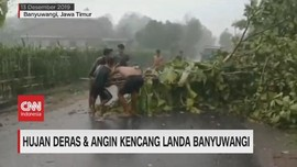 VIDEO: Hujan Deras & Angin Kencang Landa Banyuwangi