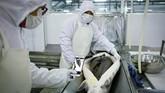 Merek ini dibuat pada tahun 2005 oleh para ahli yang bekerja untuk kementerian pertanian dan sekarang memproduksi lebih dari sepertiga kaviar dunia, menjadikan Cina pemimpin global. (Photo by WANG ZHAO / AFP)