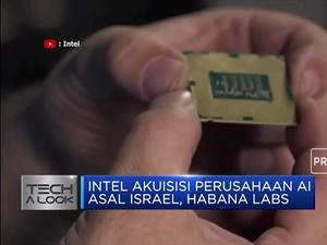 Intel Akuisisi Perusahaan AI Israel Rp 28 T