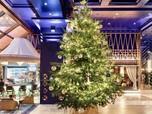 Seharga Rp 210 M, Ini Pohon Natal Termahal di Dunia!