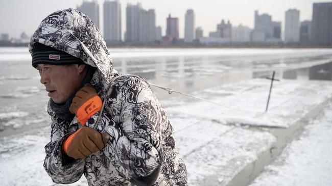 Sesampainya di tepi sungai, mereka menggunakan gergaji motor besar untuk memotong permukaan es seluas 220x190 meter - lebih besar dari dua lapangan sepak bola. (NOEL CELIS / AFP)