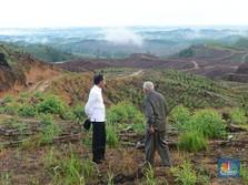 Jokowi Sampaikan Update Soal Ibu Kota Baru RI Nih..