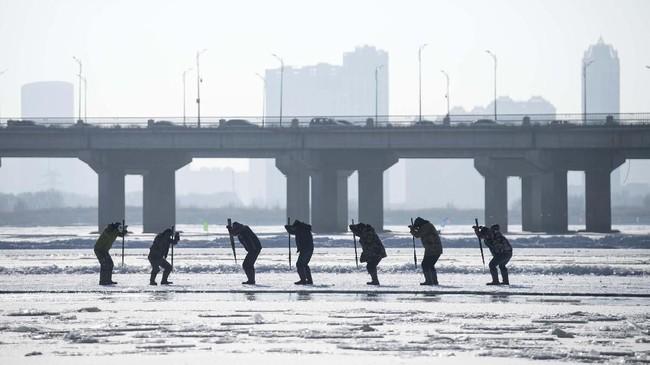 Mereka masing-masing bisa menghasilkan sekitar 500 yuan (sekitar Rp1 juta) per hari. (NOEL CELIS / AFP)