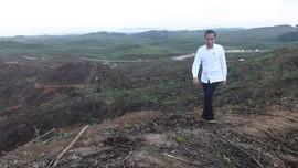 Jokowi Taruh Istana Negara di Dataran Tertinggi Ibu Kota Baru
