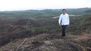 Jokowi Ingin Kepala Badan Otorita Ibu Kota dari Generasi Muda