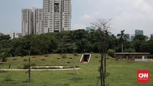 Pemprov DKI Era Anies Klaim Tanam 36 Ribu Pohon Selama 2019