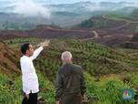 Dua Skenario Pemindahan PNS di Ibu Kota Baru & Paksaan Jokowi