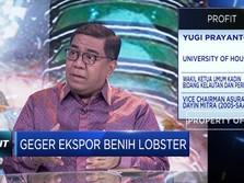 Streaming: Ribut Ekspor Benih Lobster, Yes or No?
