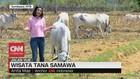 VIDEO: Wisata Tana Samawa