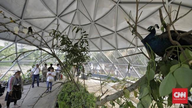 Mengutip Antara,revitalisasi hutan kota Kemayoran meliputi pembangunan amphiteater (teater terbuka) dan panggung apung (floating stage) yang bisa dipakai pentas musik atau kegiatan lainnya.