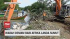 VIDEO: Wabah Demam Babi Afrika Landa Sumut