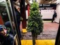 FOTO: Manusia Pohon Natal Hebohkan Liburan New York