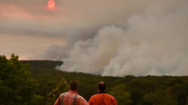 Pemerintah negara bagian New South Wales Australia mendeklarasikan darurat kebakaran hutan dan lahan (karhutla) selama 7 hari pada Kamis (19/12), dikutip dari Associated Press. (Photo by Peter PARKS / AFP)
