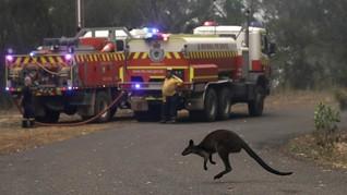 Australia Waspada Gelombang Panas, Peringatan Karhutla