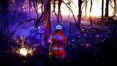 Selain New South Wales, kebakaran hutan juga terjadi di Queensland, Australia Selatan dan Australia Barat. Asosiasi Medis Australia merekomendasikan penduduk agar tetap terhidrasi, mendapatkan udara sejuk, serta mengurangi paparan matahari untuk menjaga kesehatan. (Photo by SAEED KHAN / AFP)