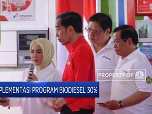 Kepada Jokowi, Dirut Pertamina Paparkan Progres Program B30