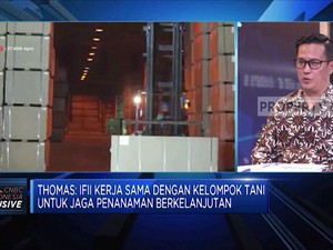 Strategi Indonesia Fireboard Dorong Kinerja Industri Kayu