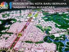 Monumental, Alasan Jokowi Pilih Rimba Nusa Ibu Kota Baru