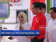 B30 Baru Jalan, Jokowi Mau RI Buru-buru ke B40