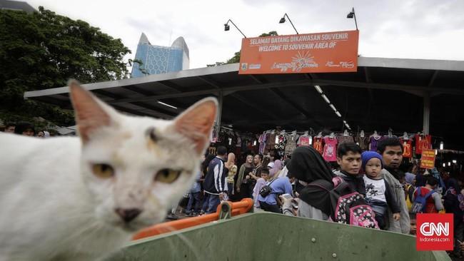 Acara Monas Week Jakarta juga menyuguhkan atraksi Video Mapping di Tugu Monas pada malam hari. (CNN Indonesia/Adhi Wicaksono)