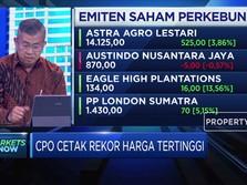 CPO Cetak Rekor Harga Tertinggi, Kinerja Emiten Terkerek Naik