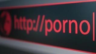 Konten Pornografi Kuasai 56 Persen Aduan Negatif Selama 2019