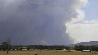 Karhutla Australia Kembali Membara, Bandara Canberra Ditutup