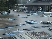 Pool Banjir, Berapa Armada Terendam & Kerugian Blue Bird?