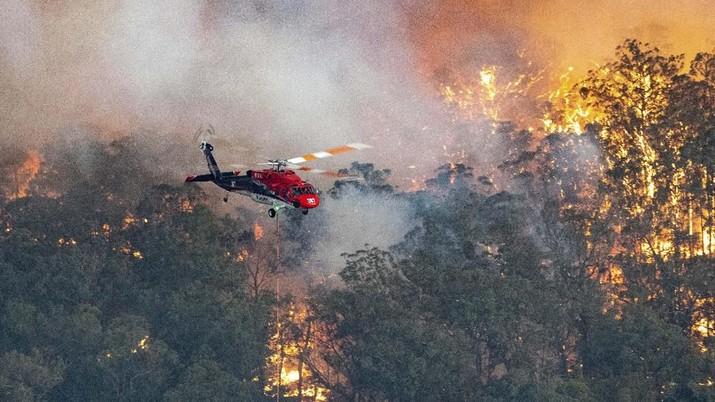 PM Selandia Baru Jacinda Ardern mengumumkan akan mengirim bantuan lagi untuk menangani kebakaran hutan Australia