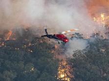 Ngeri! Hutan Terbakar, Langit Australia Masih Merah Membara