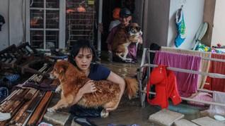 Nomor Telepon Pelayanan dan Penyelamatan Hewan Saat Banjir