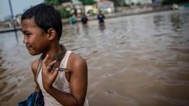 Waspada Ular Usai Banjir