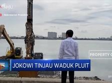 Jokowi Tinjau Waduk Pluit