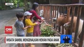 VIDEO: Wisata Sambil Mengenalkan Hewan Pada Anak