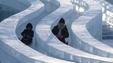 Udara dingin yang bertiup selama festival berasal dari Siberia. Musim panas di sini bersuhu 21,2 derajat Celcius, sementara saat musim dingin bersuhu -16,8 derajat Celcius. (NOEL CELIS / AFP)