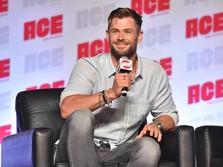 Chris Hemsworth Sampai Pink Sumbang Miliaran untuk Australia
