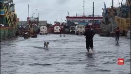 VIDEO: Warga Penjaringan dan Kaliadem Jakut Hadapi Banjir Rob