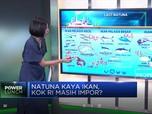 Natuna Kaya Ikan, Kok RI Masih Impor?