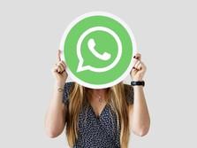 Kabar Baik! WhatsApp Batal Cari Duit Lewat Iklan
