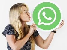 Luncurkan 5 Fitur Baru: Ada Paket Stiker WhatsApp!