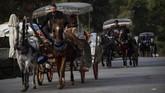 Warga Turki menggantungkan hidupnya pada kuda-kuda peliharan mereka. (Photo by Yasin AKGUL / AFP)