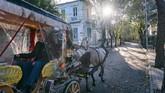 Gubernur Istanbul sampai harus turun tangan, dan akan menutup bisnis kereta kuda ilegal yang tidak memperhatikan hewan peliharannya. (Photo by Yasin AKGUL / AFP)