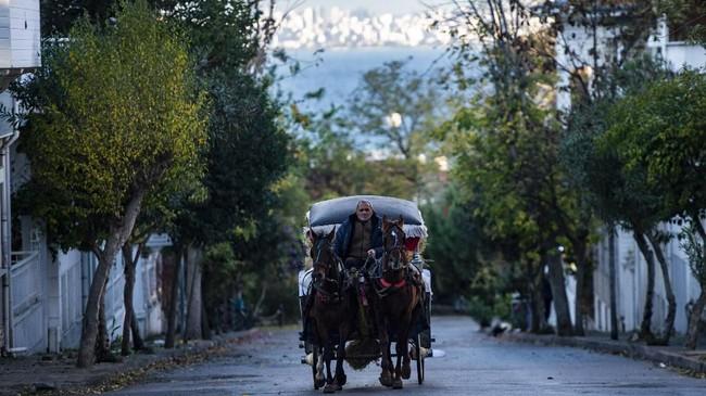 Ada 400 kuda di pulau Buyukada, Istambul dalam kondisi 'sekarat' dalam setahun karena kurang kurang mendapat perhatian dari pemiliknya. (Photo by Yasin AKGUL / AFP)