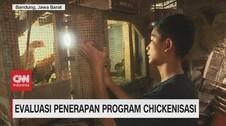 VIDEO: Evaluasi Penerapan Program Chickenisasi