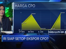 Streaming! Jokowi Imbau Setop Ekspor CPO, Ini Respons Gapki