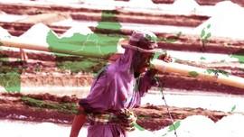 Indonesia Mabuk Garam Impor